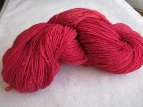 araucania-0021